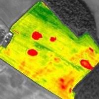 biomass-mapping-937x624